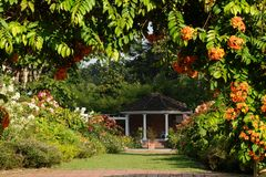 Paisaje del jardín Imagen de archivo libre de regalías