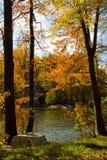 Paisaje del lago autumn Imagen de archivo libre de regalías