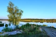 Paisaje del lago del verano de la tarde Imagen de archivo