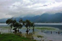 Paisaje del lago Erhai Fotografía de archivo libre de regalías