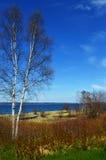 Paisaje del lago Michigan Imagen de archivo libre de regalías