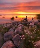 Paisaje del lago Peipsi Mujer entre las flores blancas y las piedras Imagen de archivo