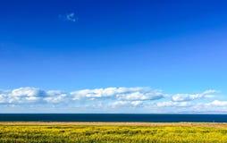 Paisaje del lago Qinghai foto de archivo libre de regalías
