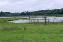 Paisaje del lago rice en el punto ventoso Imagen de archivo libre de regalías