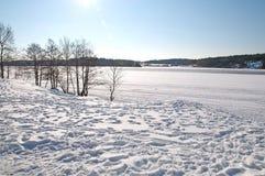 Paisaje del lago snow Imagen de archivo