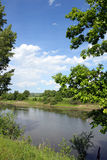 Paisaje del lago summer fotos de archivo