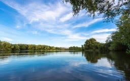Paisaje del lago summer con los árboles y el arbusto verdes, Woking, Surrey foto de archivo