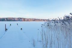 Paisaje del lago winter en Finlandia Imagen de archivo libre de regalías
