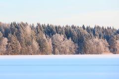 Paisaje del lago winter en Finlandia Fotos de archivo