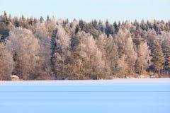 Paisaje del lago winter en Finlandia Fotografía de archivo