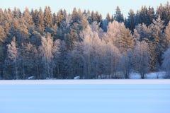 Paisaje del lago winter en Finlandia Foto de archivo