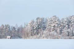 Paisaje del lago winter en Finlandia Imagen de archivo
