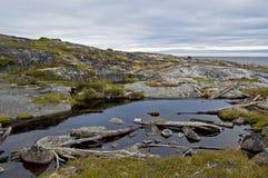 Paisaje del mar blanco con las piedras Foto de archivo