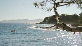Paisaje del mar con las rocas en un día de verano brillante - 4k almacen de metraje de vídeo