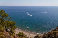 Paisaje del mar con un árbol - una foto 3 Imagen de archivo