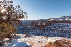 Paisaje del monumento nacional de Colorado en invierno imágenes de archivo libres de regalías
