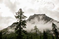 Paisaje del Mt Siguniang en Sichuan, China Fotos de archivo libres de regalías
