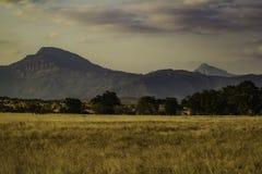 Paisaje del oeste Kenia África del parque nacional de Tsavo Fotografía de archivo libre de regalías