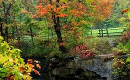 Paisaje del otoño Imagen de archivo