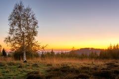 Paisaje del otoño - bosque negro Foto de archivo