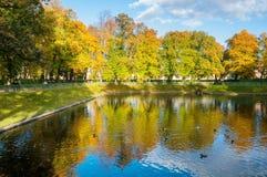 Paisaje del otoño - charca de Karpin en jardín del verano con la gente que camina en St Petersburg, Rusia Imagen de archivo libre de regalías