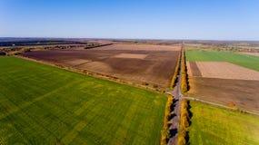 Paisaje del otoño: cielo azul, árboles coloridos, campos amarillos Fotografía de archivo