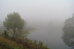 Paisaje del otoño con el árbol amarillo en la costa del río Fotos de archivo