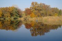 Paisaje del otoño con el árbol amarillo en la costa del río Foto de archivo
