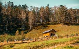 Paisaje del otoño con el abeja-jardín y la pequeña casa de madera Imagenes de archivo
