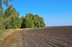 Paisaje del otoño con el campo arado Fotos de archivo libres de regalías