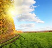 Paisaje del otoño con el campo verde Fotografía de archivo libre de regalías