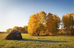 Paisaje del otoño con el haycock en un prado Foto de archivo