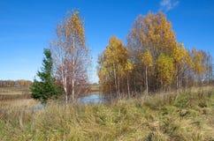 Paisaje del otoño con el río en un día soleado Imagen de archivo libre de regalías