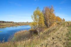 Paisaje del otoño con el río en un día soleado Foto de archivo
