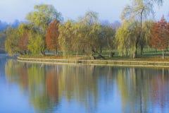 Paisaje del otoño con la reflexión de los árboles en el lago Fotos de archivo