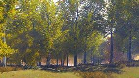 Paisaje del otoño con las hojas que caen de árboles metrajes