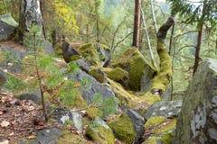 Paisaje del otoño con las rocas Fotos de archivo libres de regalías