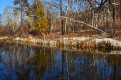 Paisaje del otoño con los árboles escarchados Parque de congelación del río del último sol del otoño del paisaje Imagenes de archivo