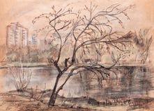 Arce en el lago Foto de archivo libre de regalías