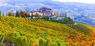 Paisaje del otoño con los viñedos en Piamonte Italia foto de archivo libre de regalías