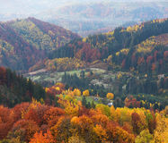 Paisaje del otoño con un bosque hermoso en las cuestas Imagen de archivo