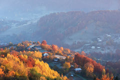 Paisaje del otoño con un bosque hermoso en las cuestas Fotografía de archivo