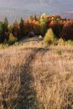 Paisaje del otoño con un bosque hermoso en las cuestas Imagen de archivo libre de regalías