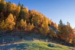 Paisaje del otoño con una cerca de madera en un pueblo de montaña Foto de archivo