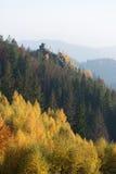 Paisaje del otoño con una roca en el bosque Imagen de archivo