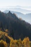 Paisaje del otoño con una roca en el bosque Foto de archivo