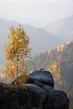 Paisaje del otoño con una roca en el bosque Imagen de archivo libre de regalías