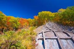 Paisaje del otoño de Japón Foto de archivo libre de regalías