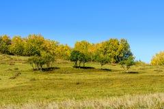 paisaje del otoño de la ladera Imagen de archivo libre de regalías