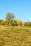 paisaje del otoño de la ladera Foto de archivo
